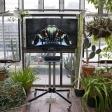 IWY-BarbicanForecast-by-Christa-Holka-20Nov16-0009web